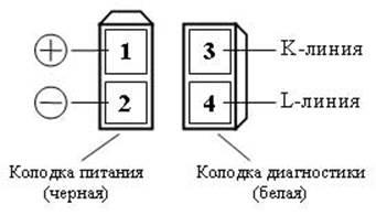 Тип разъема №1 - два 2-х контактных разъема (черный и белый)